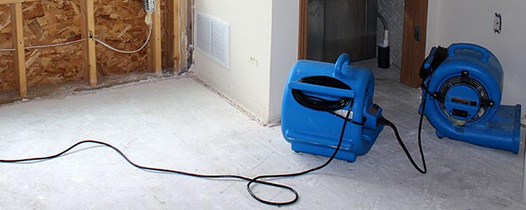 Emergency Water Extraction Services Winnipeg Diamond