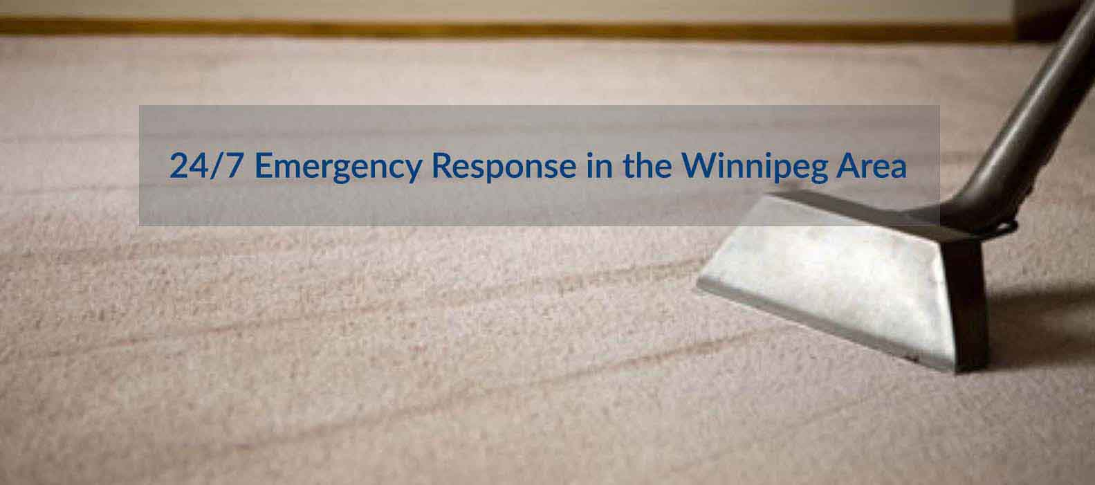Winnipeg Carpet Cleaning Carpet Cleaning Winnipeg